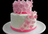 Gâteau Rose et ses papillons