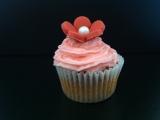 Cupcakes mini